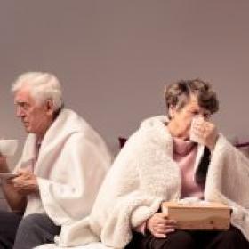 Grip o refredat? (II). La grip
