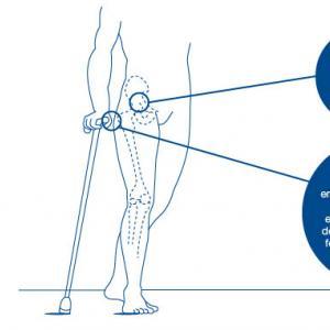 Personas mayores con movilidad reducida: ¿muletas, bastón o andador?