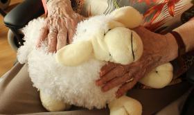 Estimulación fisica y mental para la demencia vascular